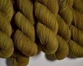 Golden Oak - mooresburg DK