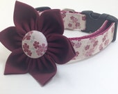 "Ready to Ship - Large 1"" Wide Cherry Blossom and Collar Flower Set - Pink and Maroon Dog Collar with Flowers"