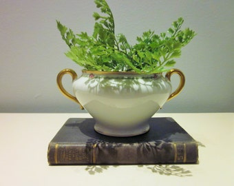 Vintage Limoges Bowl with Handles and Lid, Planter, Antique