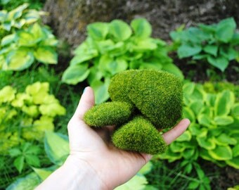 Faux Moss Rocks for Terrarium and Miniature Decoration Spring and Winter Gardens