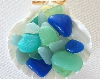 Sea Glass Soap Favors, Scallop Dish, Showers, Party Favors,Wedding Favors, Lobster Bake Favors, Party Favors,Weddings, CUSTOM ORDERS WELCOME