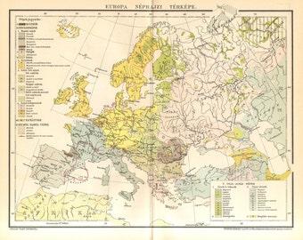 1893 Original Antique Ethnographic Map of Europe