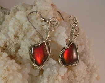 Deep to Bright Red to Purple Fire Gem Ammolite Pebble Jewelry from Utah Deposit in Argentium Sterling Silver Wire Wrapped Earrings 311