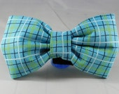 Dog Bow Tie or Flower  - Lunchbox in Blue
