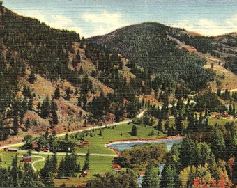 Red River, New Mexico, Red River Pass, Buffalo Trail - Vintage Postcard - Linen Postcard - Unused (D)