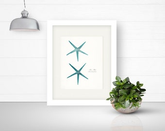 Two Coastal Decor Antique Sea Stars Giclee Art Print 8x10 bright turquoise