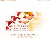 ON SALE Pumpkin Apple Spice Lip Balm - All Natural - Fall Harvest Pumpkin and Orchard Apple Cinnamon