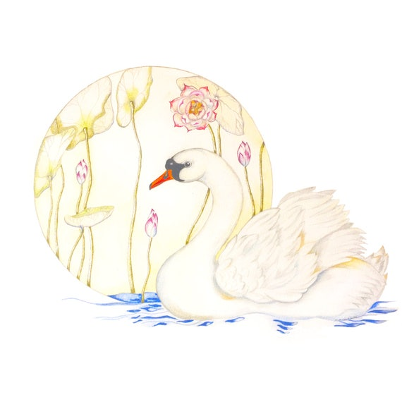 LIMITED EDITION Swan in Lake, Swanlake, Symbolic Bird, Feng Shui Water Element, Swan Shapeshifter, Ancient Bird, Purity Beauty, Art Fengshui