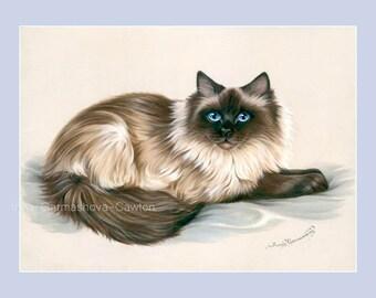 Ragdoll Cat Print Beautiful Coat by Irina Garmashova