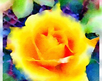 Watercolor Print - Yellow Rose - Floral