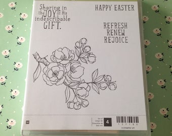 Stampin'Up! Indescribable Gift. Stamp set. Woodmount .