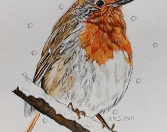 Christmas robin, fine art card