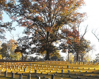 Sunrise in the Cemetery Photo - Civil War Battle of Shiloh Cemetery with Headstones - Sun Streaked Autumn Morning