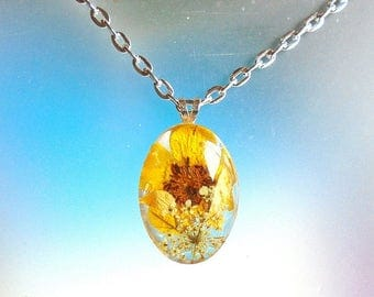 Real Buttercup Queen Annes Lace Pressed Flower Wildflower Glass and Resin Oval Pendant Necklace