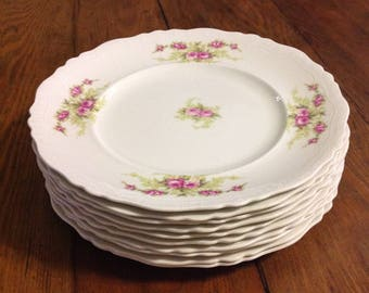 Set of 10 antique dinner plates Johnson Bros Brothers England Pat 1902 china white pink roses farmhouse cottage chic wedding dining serving