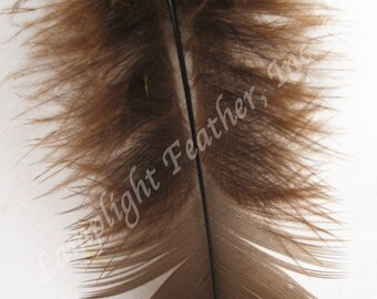 Turkey Plumage Craft Feathers - Brown, Ivory, Green, Gray, Turquoise (select color) One color per ounce package