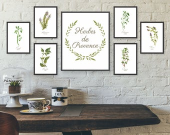 Unframed Watercolor Herb Wall Art, Kitchen Wall Art Set, Gallery Wall Art  Set,