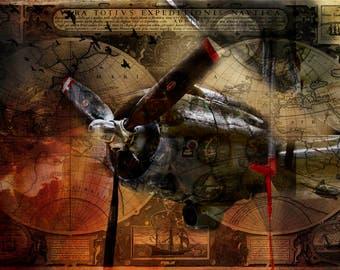 Freedom Plane, Plane, Red, Bronze, Black, History Airplane, WW2, War Heros, Liberty, USA,Airmen, Aircraft, Print, Photography, courage,pilot