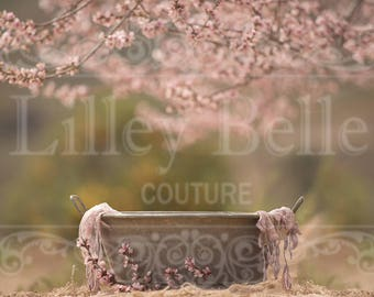 Digital prop/backdrop from our NATURE COLLECTION (Peach blossom SITTER Vintage Bath Tub)