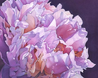 Pink Peony watercolor painting Print Choice of sizes