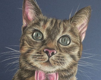 A3 Pastel Cat Drawing