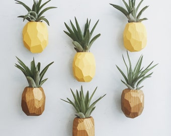 PRE-ORDER Pineapple Air Plant Magnet w/Air Plant (Ships in 3 weeks)