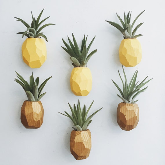 Pineapple Air Plant Magnet w/Air Plant