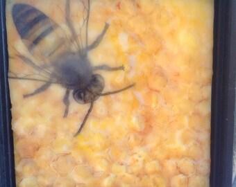 6x6 Bee Encaustic Painting
