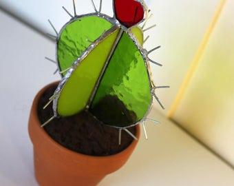 2 Tone 3D glass cactus potted plant