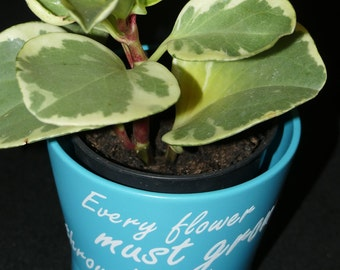 Handmade inspirational quote plant pot - small