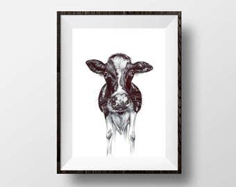 "Calf -  Cow Art Print - 5x7"" Biro Drawing Ink Pen Illustration Kitchen Cow Wall Hanging Art Farm Decor"
