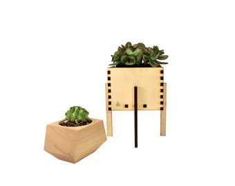 Wooden Planter & Stand, Minimalist Planter Box and Plant Stand, Succulent Planter, Handcrafted in Portland, Oregon