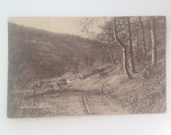 Old Postcard Seven Wells Combe Devon Real Photo Posted 1922