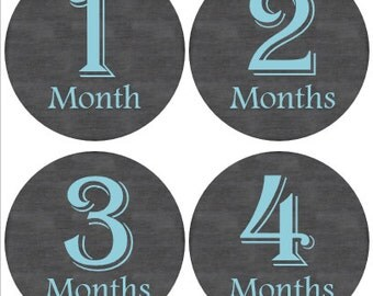 Monthly Baby Stickers Boy, Milestone Stickers, Month Stickers, Baby Month Stickers, Baby Stickers, Blue #19