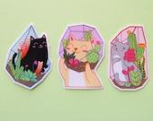 THREE PACK Terrarium Cat Stickers