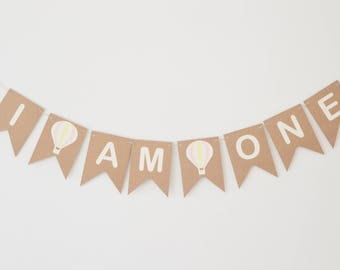 First Birthday Party Decoration, I Am One Bunting, Hot Air Balloon 1st Party, Girls Birthday, Banner, All Ages Available