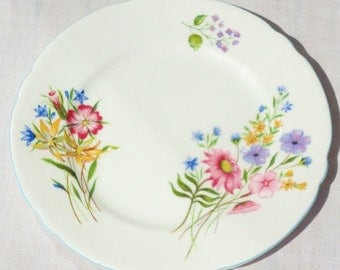 6 Shelley Tea Plates a set of Six Bread Butter Plates  Wild Flowers  Replacement China Match Search British High Tea Party blue flowers