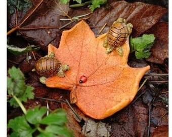 Fairy Garden  - Little Turtles On Leaf With Ladybug - Miniature