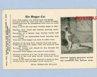 "Humane Society SPCA Postcard ""The Beggar Cat"",  Ella Wheeler Wilcox Poem, Boston, Abandoned Animals, 1910"