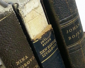 Dutch Book Decor Set - (Browns - Blues - Greens)