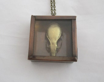 Gold Rat Skull Shadowbox Pendant Necklace