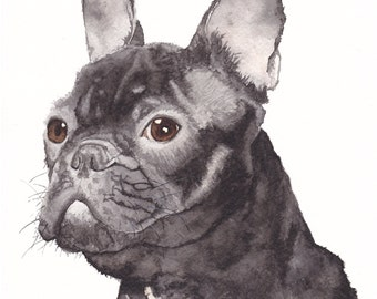 Watercolour French Bulldog- French Bulldog Portrait- French Bulldog- Bulldog Art- Pet Portrait- Watercolour Print- Art by Lewis Hanson