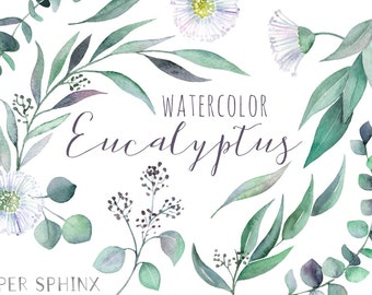 Watercolor Eucalyptus Clipart | Greenery Clipart - Flowers, Leaves, Branches and Stems - Wedding Invitation Clip Art - Instant Download PNGs