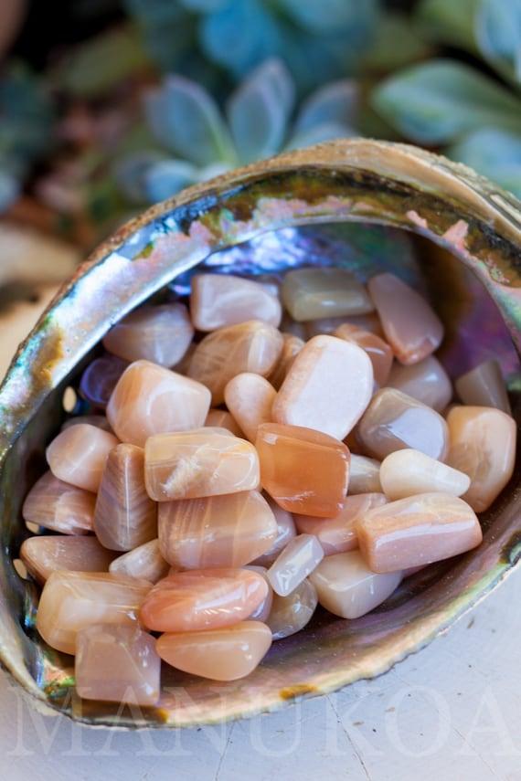 4 Peach Moonstone Tumbled Stones Moonstone Specimen
