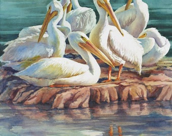 White pelicans coastal birds watercolor print