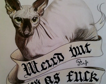 Drawing of Kat Von D's sphynx cat Piaf artwork art cat drawing gothic goth