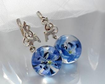 Real blue snowdrop Resin Earrings - Real flowers Earrings - Blue Earrings - Silver Leverback Hooks Earrings