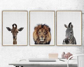 Safari Nursery Decor Set of 3, Safari Animals Wall Decor, Giraffe Print, Lion Print, Zebra Print, Animal Nursery Art, Safari Nursery Print