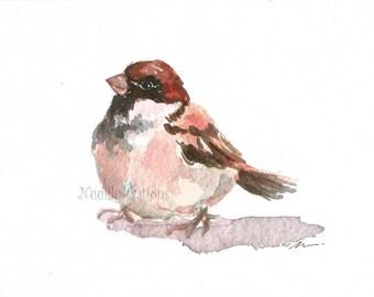 ORIGINAL Watercolor Bird Sparrow Nursery Art Illustration Animal Hand Painted 5x7