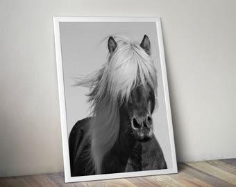 Horse print, horse photography, horse decor, horse wall art, printable art, horse printable, horse art print, nursery print, horse art,